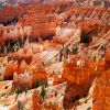 Bryce Canyon, highlight van een rondreis Amerika