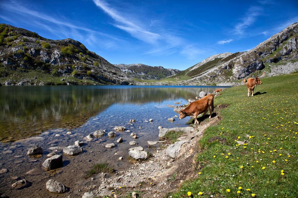 gletsjermeer, Picos de Europa, Asturie, Spanje