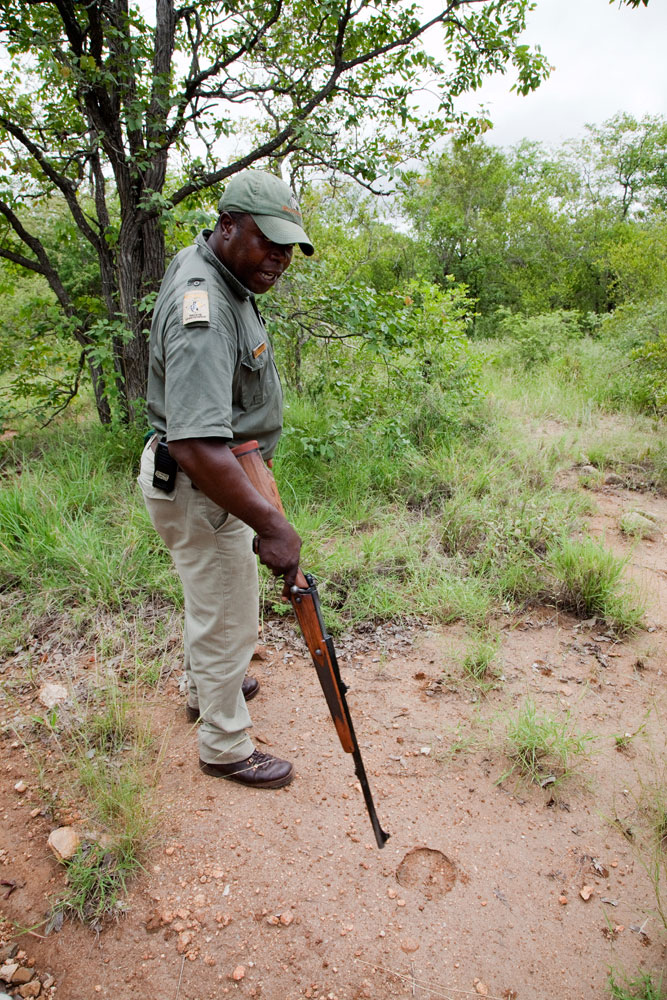 Op wandelsafari met ranger Shadrack, Zuid-Afrika