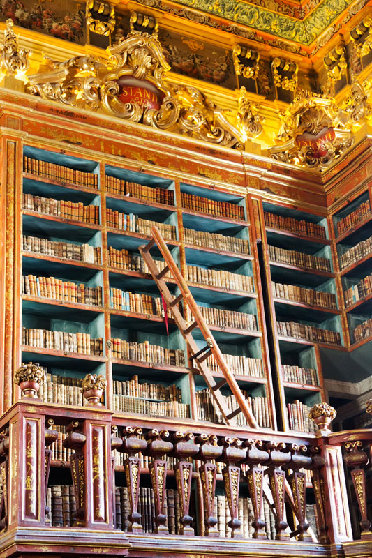 Detail of the library of Coimbra, Portugal.