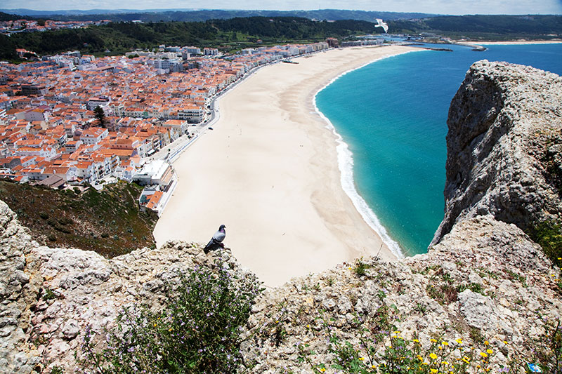 The sandy beach of Nazare, Portugal