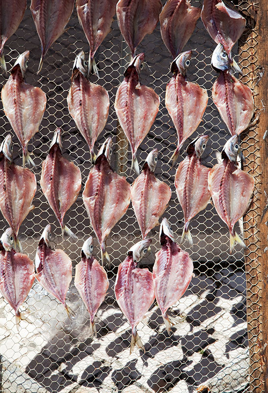 Drying fish in Nazare, Portugal.