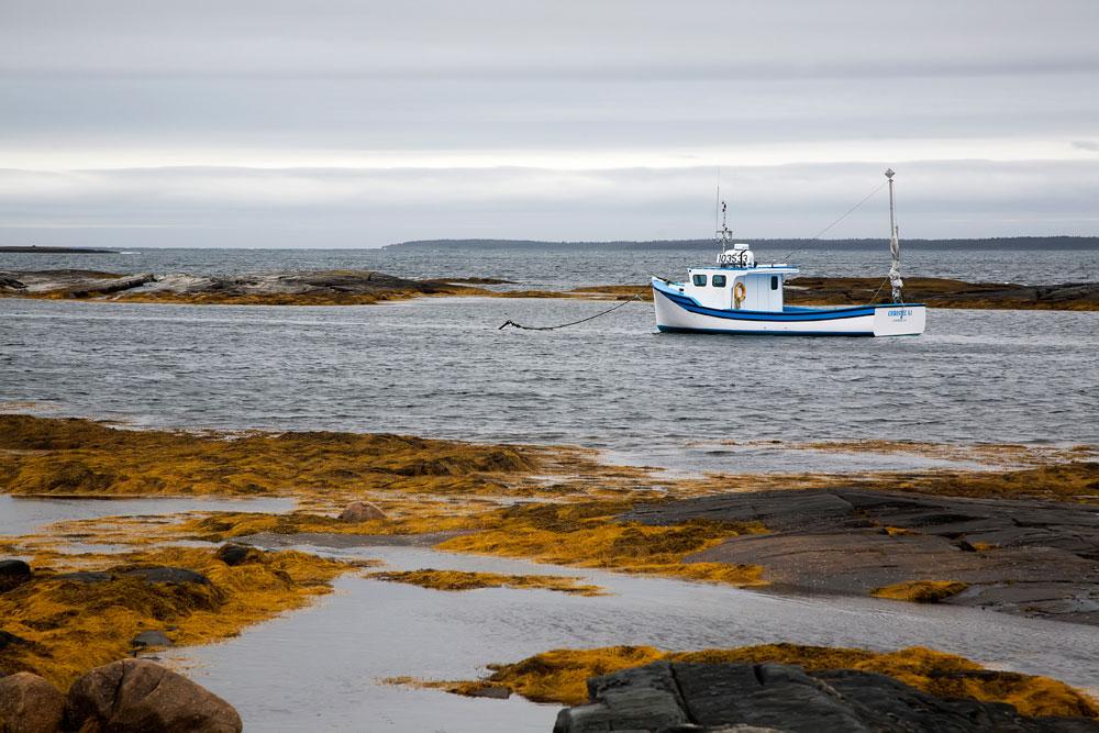 Rondreis Nova Scotia, Canada: Blue Rocks
