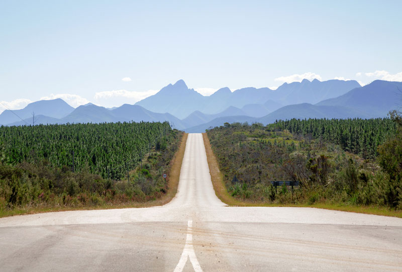 Rondreis Zuid-Afrika: de wijn – en tuinroute