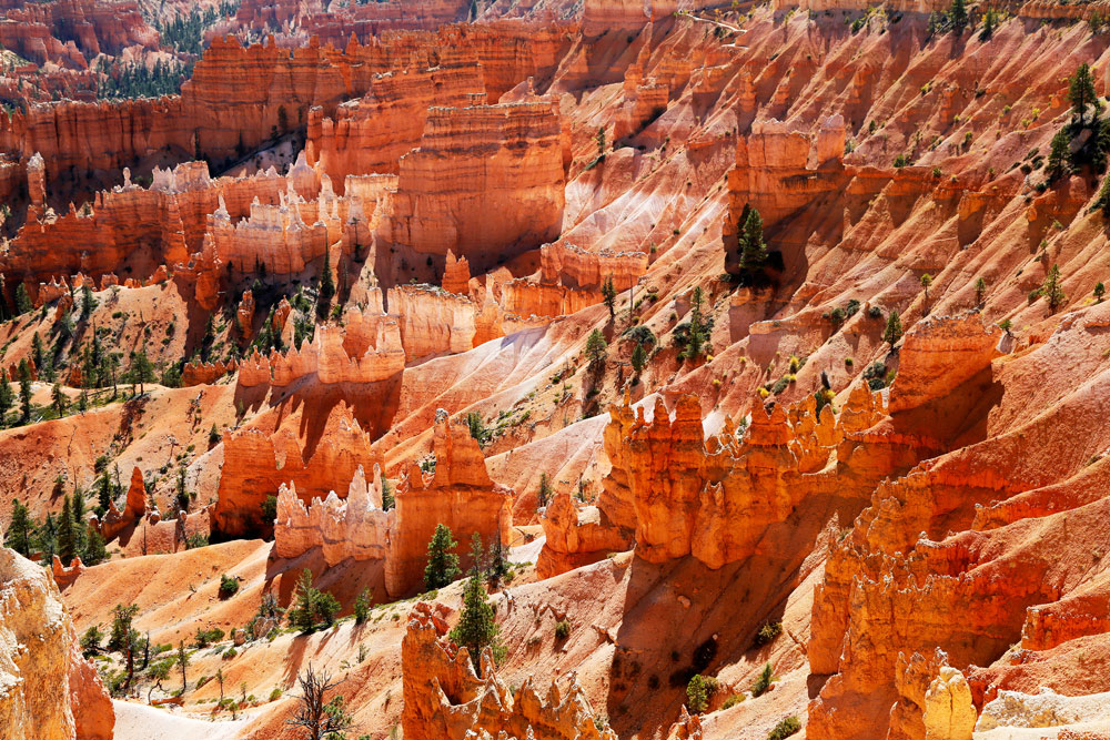 Rondreis West-Amerika: wandelen in Bryce Canyon National Park