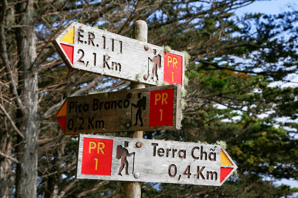 Porto Santo, Portugal, Verdwalen op weg naar de Pico Branco is onmogelijk