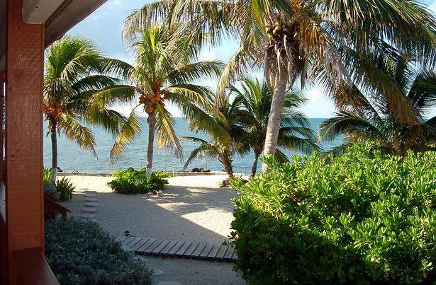 Slechts drie minuten varen en je bent in een paradijsje, privé-eiland Florida