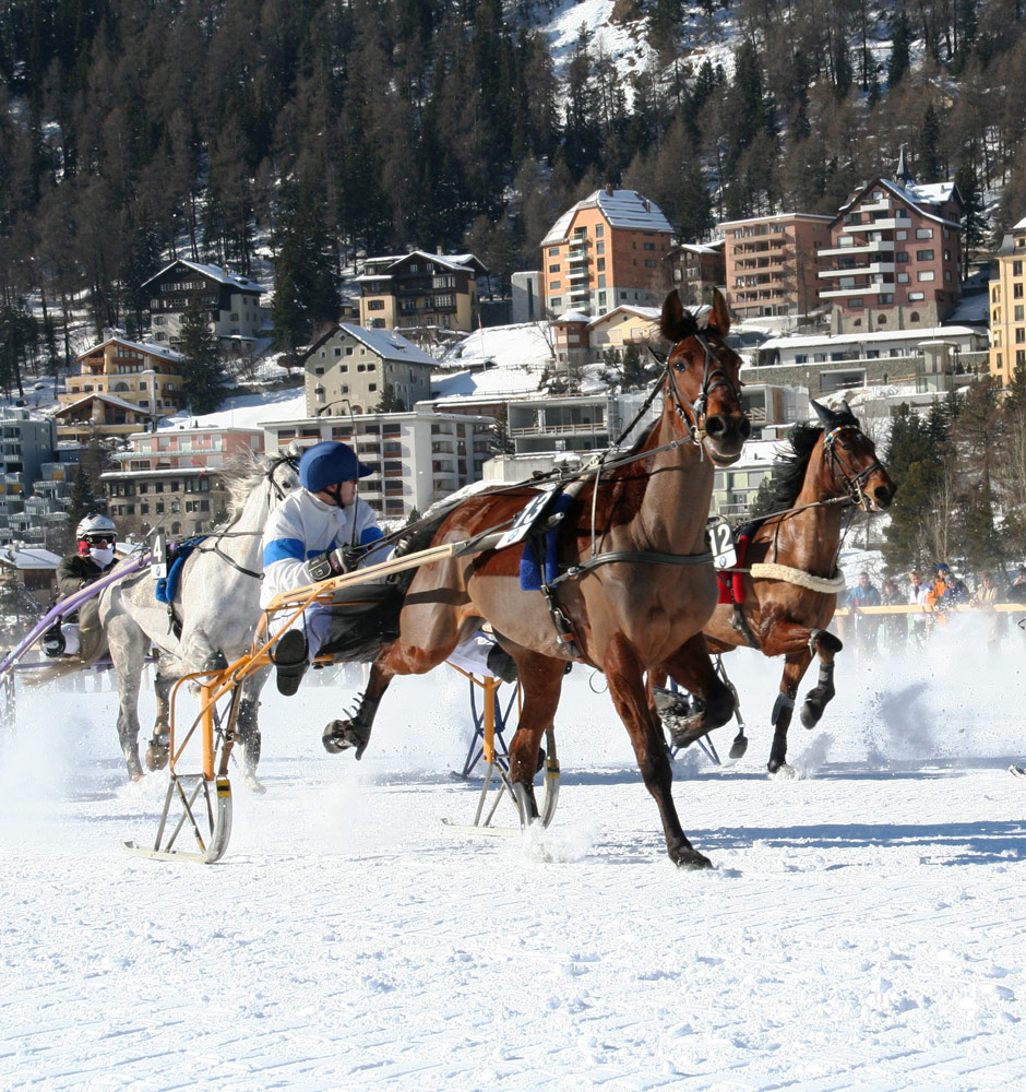 In volle vaart vooruit op The White Turf in St. Moritz, wintersport St. Moritz, Zwitserland