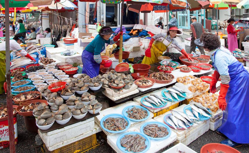 De beroemde vismarkt van Busan, Rondreis Zuid-Korea, bezienswaardigheden, hotspots