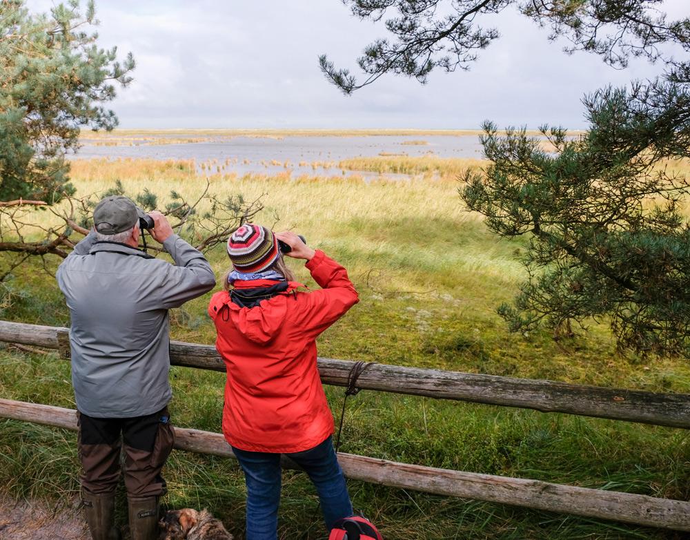 Vogelspotters in het natuurgebied van Darss in Duitsland. Bezoek aan het Darss bos op weg aar Rugen, Mecklenburg Vorpommern, Duitsland