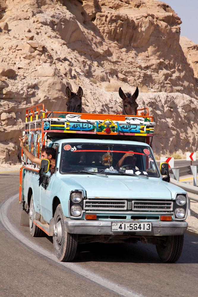Paardenvervoer in het binnenland van Jordanië . Rondreis Jordanie met Wadi Rum, Petra, Dana reserve en de Dode Zee