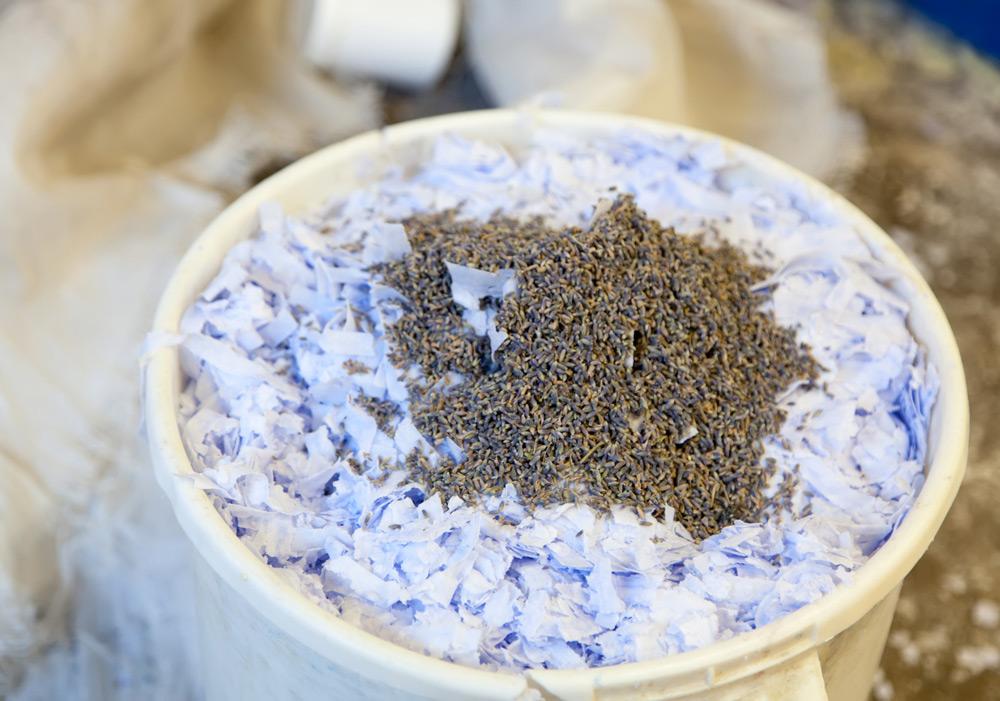 Echte lavendel in de zeep bij Savonnerie Marseillaise de la Licorne . Stedentrip Marseille, Frankrijk, weekendje weg, hotels, Ben mobiele telefoonabonnementF