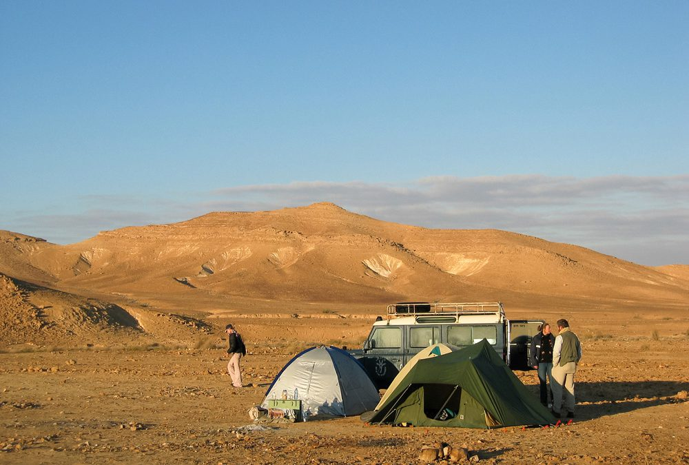 Negev woestijn: rondreis door de wildernis